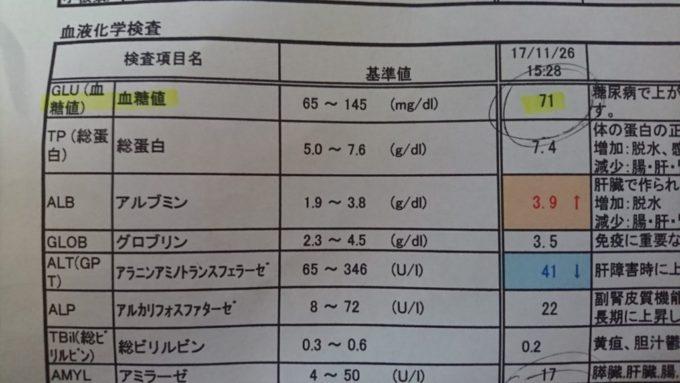 フェレットの血糖値