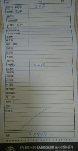野村獣医科vセンター領収書