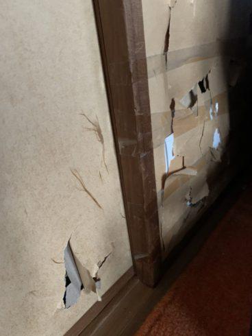 フェレットに破られた襖