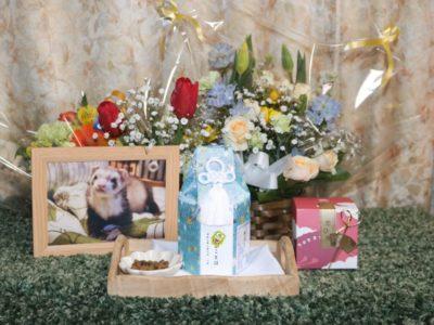 フェレットのお葬式